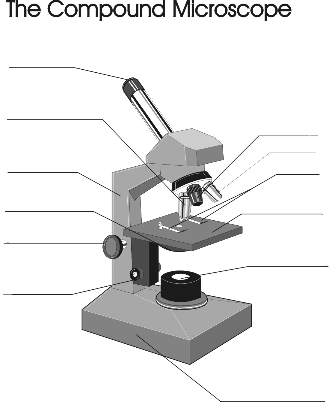 Microscope Quiz Worksheet Sharebrowse – Parts of a Microscope Worksheet